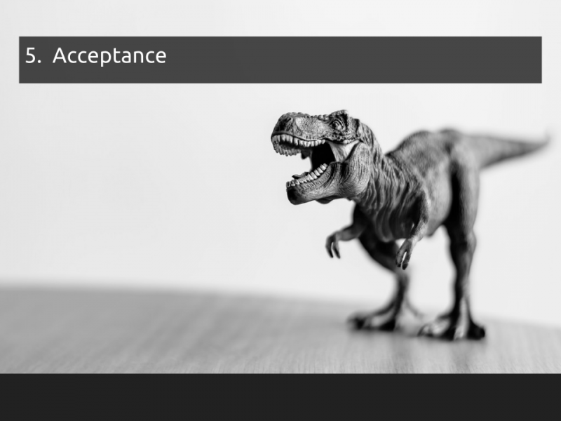 "[Slide 12] has a title of ""5. Acceptance"" and contains an artistic photo of a cheerful looking T Rex toy"