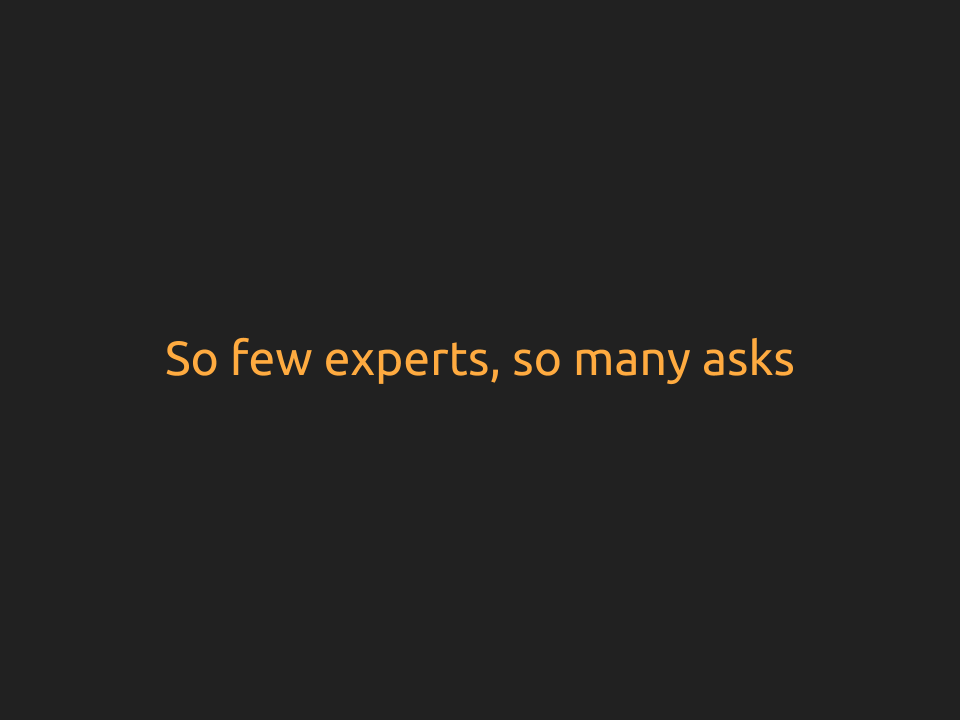 "[Slide 13] reads ""So few experts, so many asks"" and contains no picture"