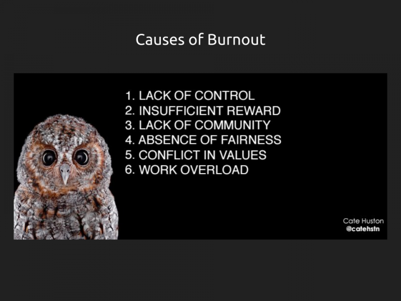 "[Silde 14] has a title ""Causes of burnout"" and then a copy of a slide by Cate Huston that has a picture of an owl and reads 1. lack of control 2. insufficient reward 3. lack of community 4. absence of fairness 5. conflict in values 6. work overload"""