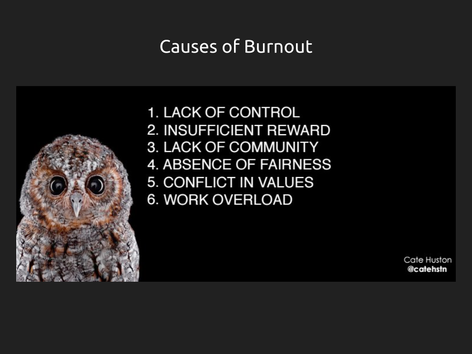 """[Silde 14] has a title """"Causes of burnout"""" and then a copy of a slide by Cate Huston that has a picture of an owl and reads 1. lack of control 2. insufficient reward 3. lack of community 4. absence of fairness 5. conflict in values 6. work overload"""""""