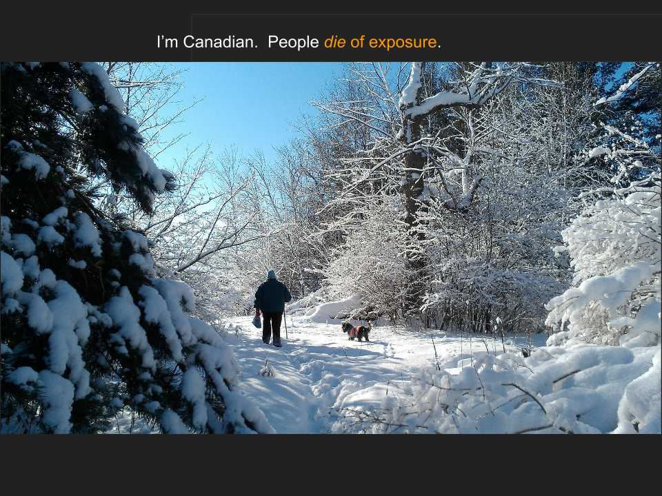 "[Slide 29] has a picture of a snowy scene with my mom and her dog Buster and reads, ""I'm Canadian. People die of exposure"""